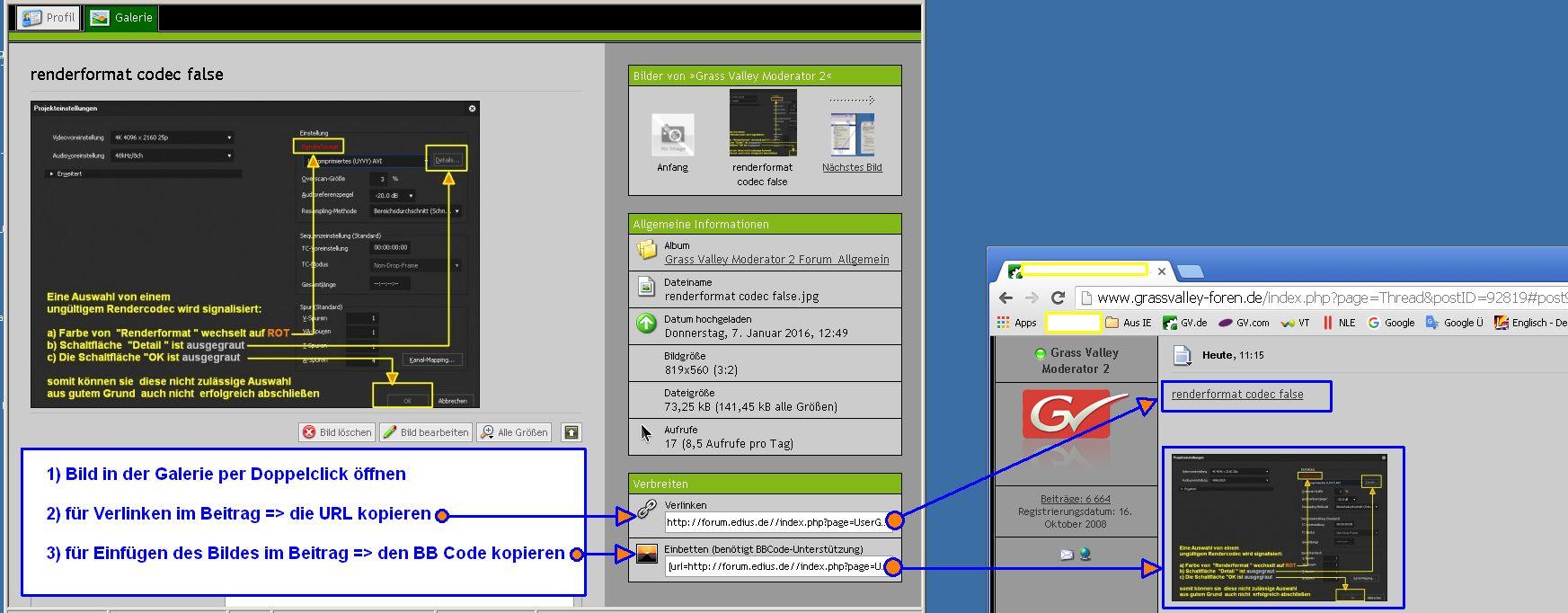 Wie ein Bild aus der Galerie in einem Beitrag verwenden >  per  URL / BB Code