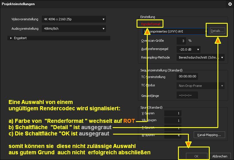 renderformat codec false