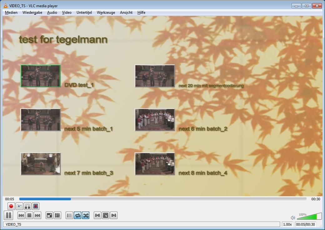 Startschirm 58 Sekunden DVD im VLC